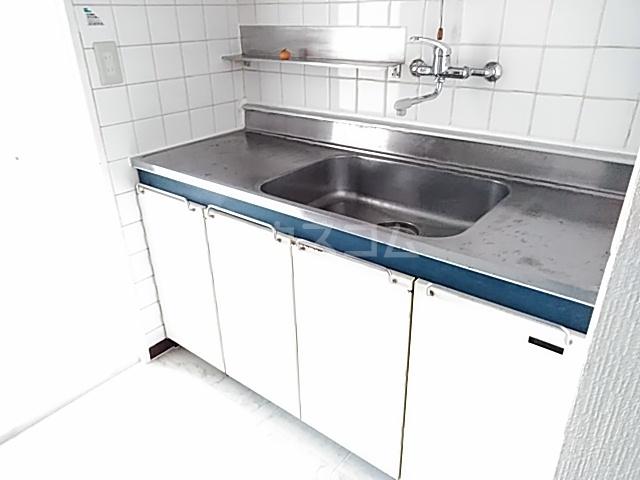 ニューシャトレーマンション 402号室のキッチン