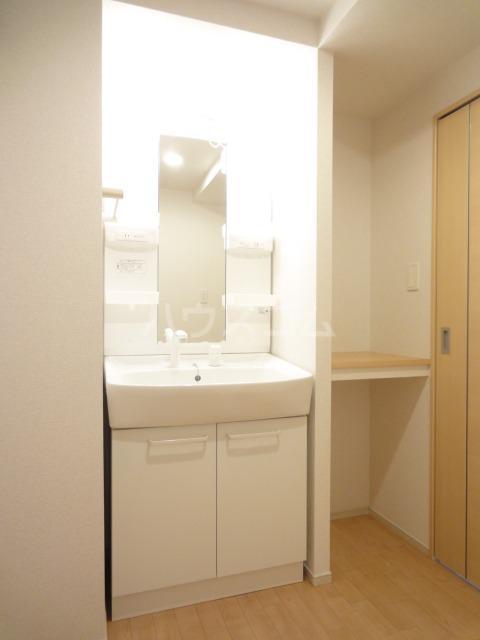 サウス板橋Ⅱ 01010号室の洗面所