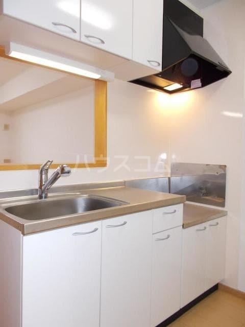 プランドールB 01020号室のキッチン