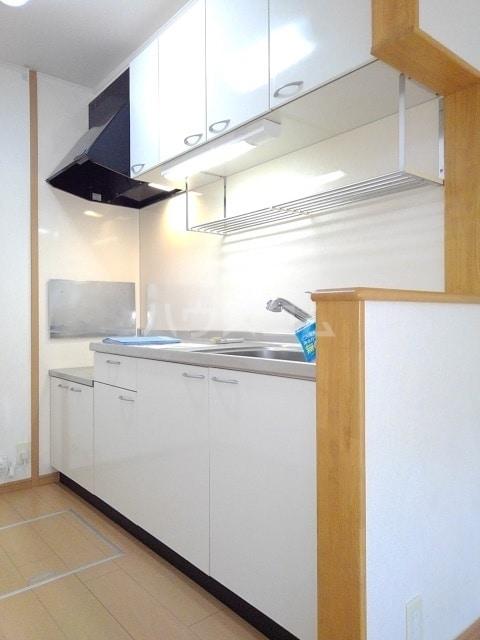 モンターニュ ドゥ 01030号室のキッチン