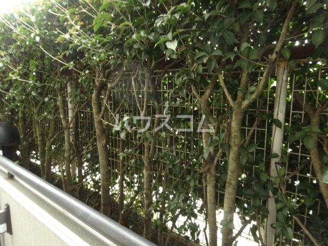 PLENDY 西船橋 207号室の庭