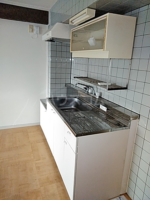 ヴィラ・アール・ヌーボー 302号室のキッチン