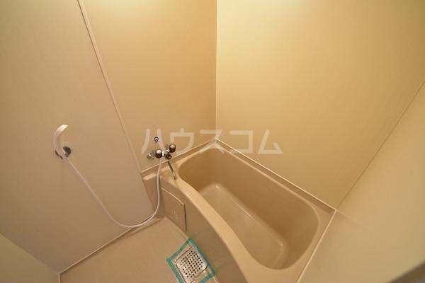 エスコーポ 202号室の風呂