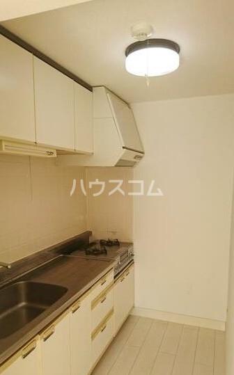 レーベン欅 203号室のキッチン