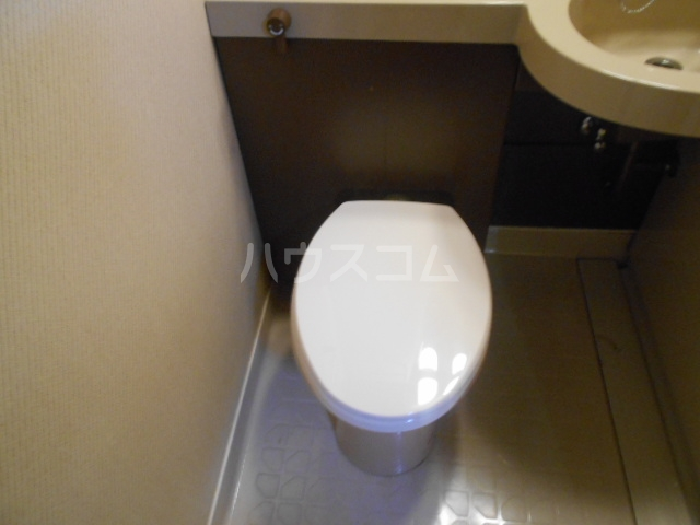 シャトレ花園 303号室のトイレ
