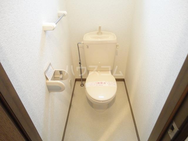 シャローム桂 203号室のトイレ