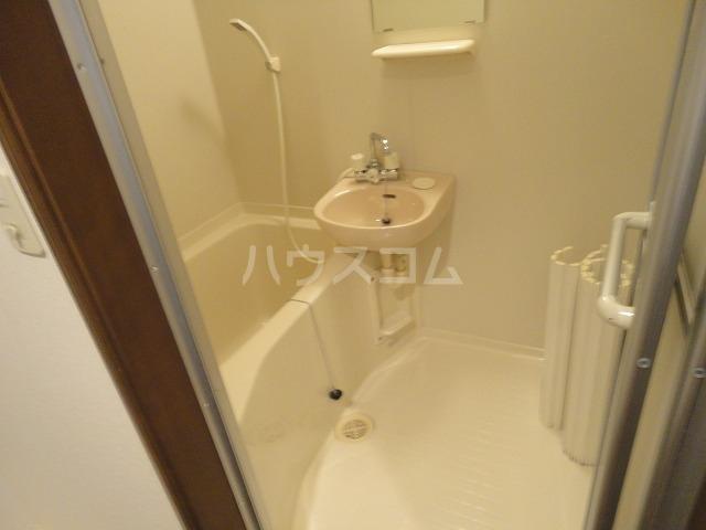 シャローム桂 203号室の風呂