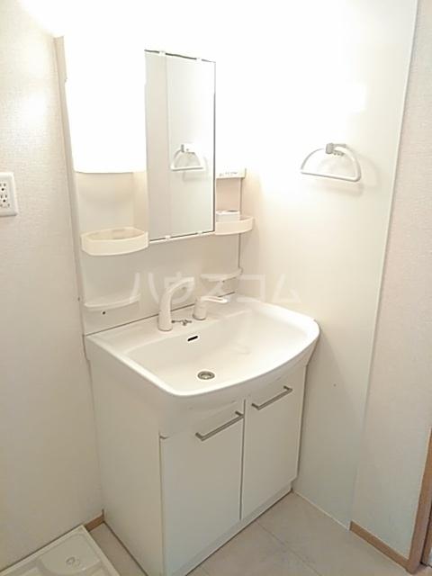 セジュールブリエ 201号室の洗面所