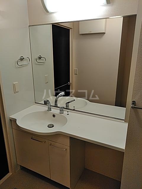 マジェスティックアン Ⅰ 302号室の洗面所
