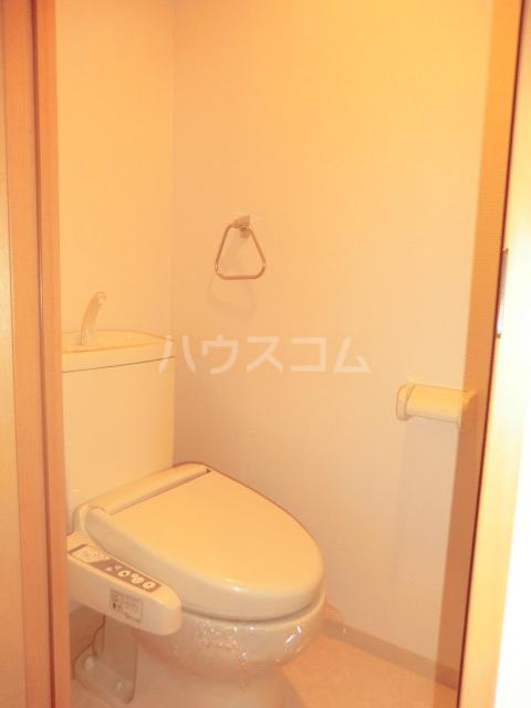 ディアメゾンM 207号室のトイレ