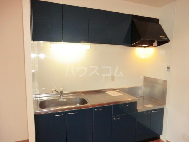 ディアメゾンM 207号室のキッチン