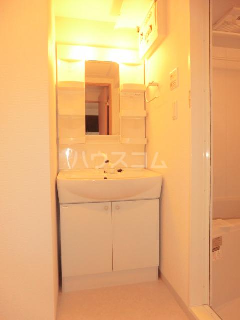 ディアメゾンM 207号室の洗面所