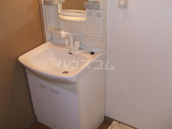 デイスターS 205号室の洗面所