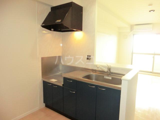 エミネンスコート 207号室のキッチン