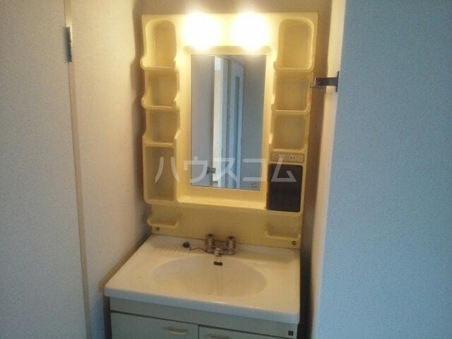 グランパス21 01010号室の洗面所