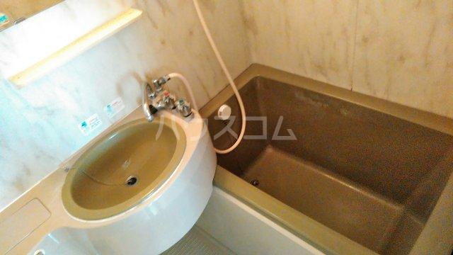 ウイステリア曽根 203号室の風呂