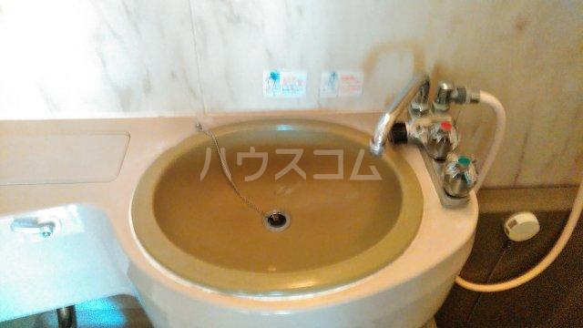 ウイステリア曽根 203号室の洗面所