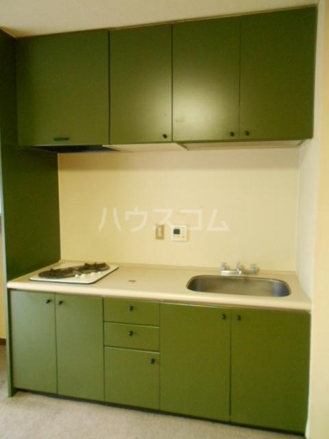 強羅ビラ 308号室のキッチン