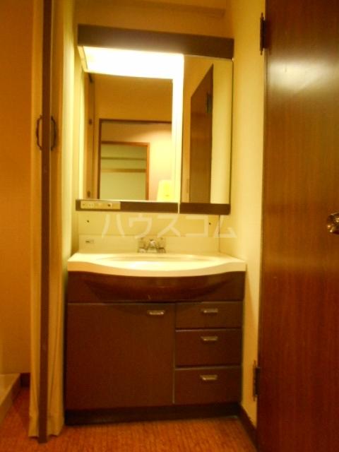 強羅ビラ 308号室の洗面所