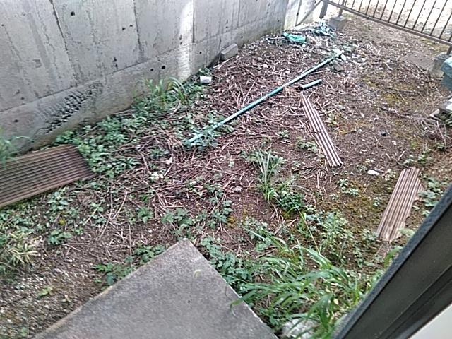 メゾンセル 102号室の庭
