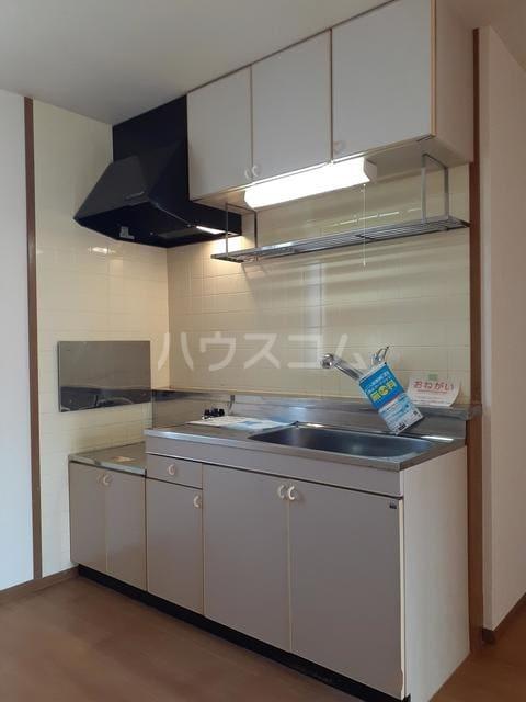 スプリングキャッスル B 02020号室のキッチン