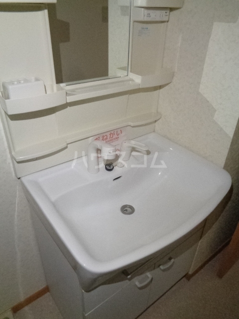 エバンジェリスター 01010号室の洗面所