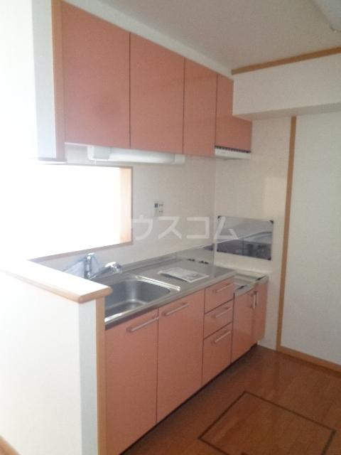エバンジェリスター 01010号室のキッチン