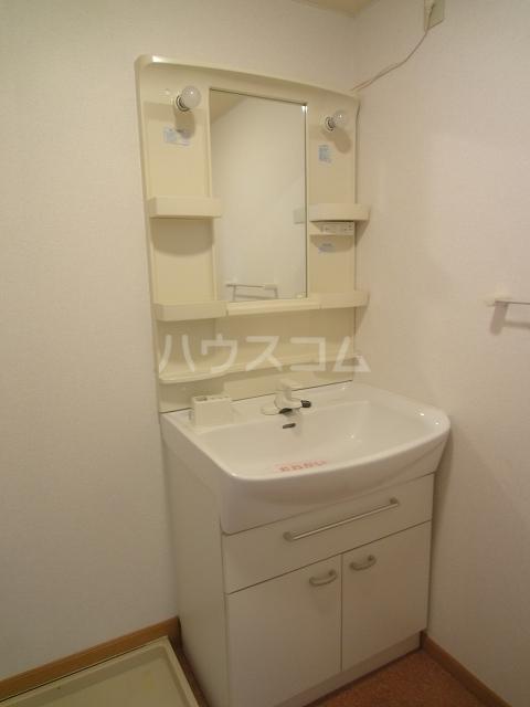 ドゥー ベルジュB 01020号室の洗面所