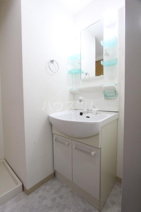 メゾンドアベニール 303号室の洗面所