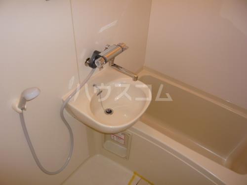 グリーンヒルズW 102号室の洗面所
