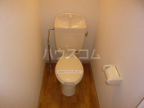 グリーンヒルズW 102号室のトイレ
