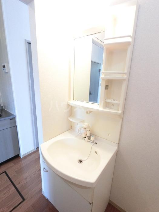セジュール田中 102号室の洗面所