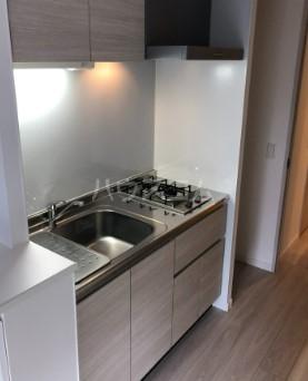 LANDIC K320 906号室の風呂