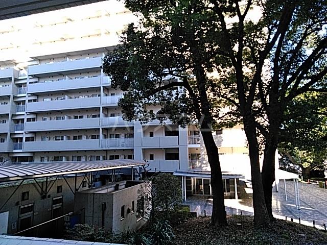 シティコート目黒 4号棟 217号室の景色