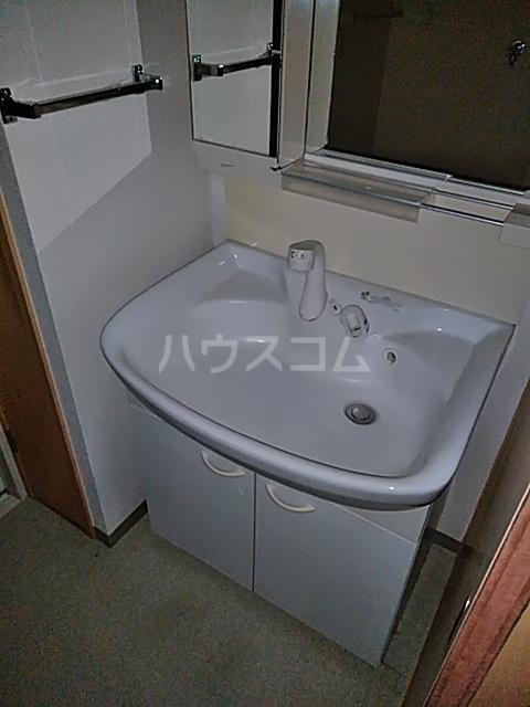 シティコート目黒 4号棟 217号室の洗面所