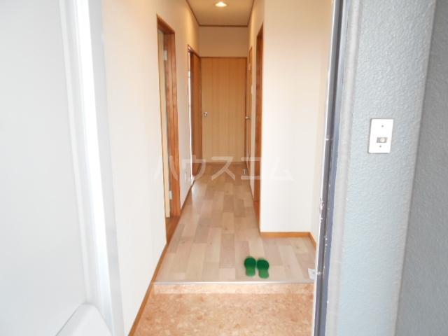 清水ハイツA 206号室の玄関