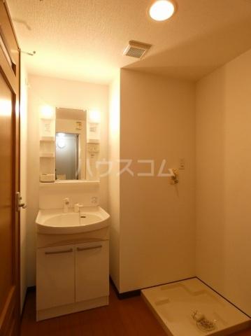 ルネス ディアコート 202号室の洗面所