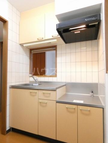 ルネス ディアコート 202号室のキッチン