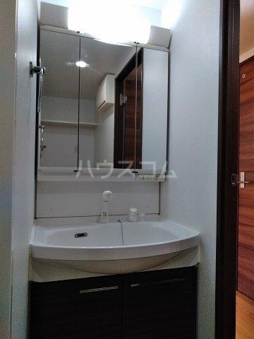 アイビーハウス 102号室の洗面所