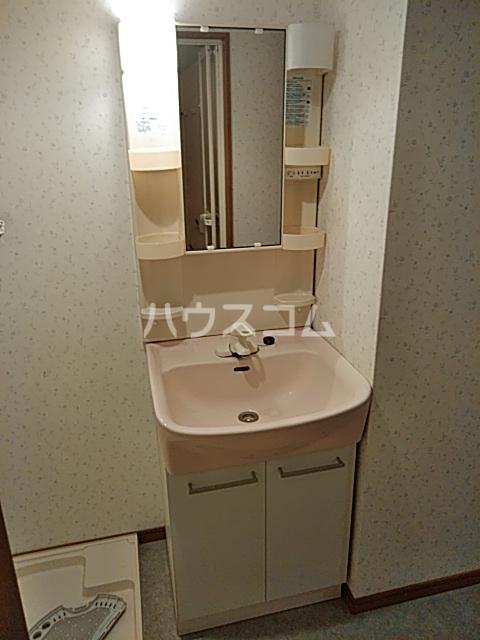 エルミタージュ 401号室の洗面所
