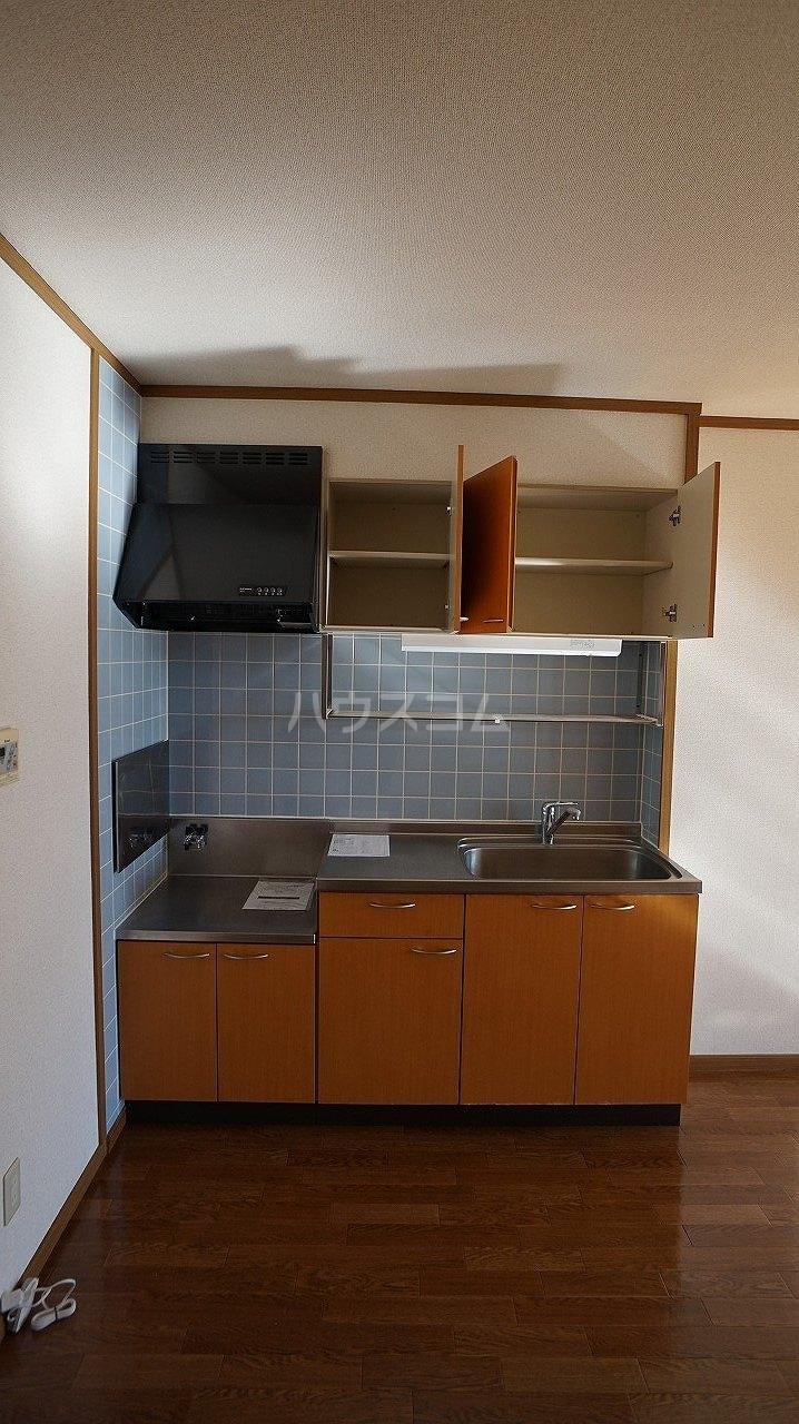 スタンドヒル 2000 B 02010号室のキッチン