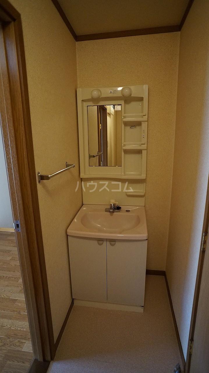 スタンドヒル 2000 B 02010号室の洗面所