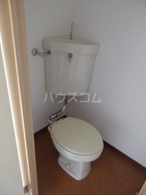 西東ハイツ南野 203号室のトイレ