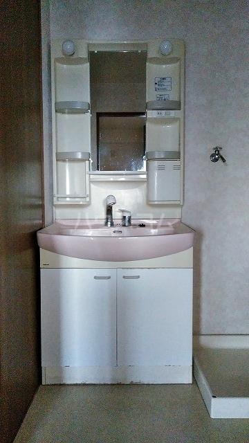 グランドコート鴻の巣 305号室の洗面所