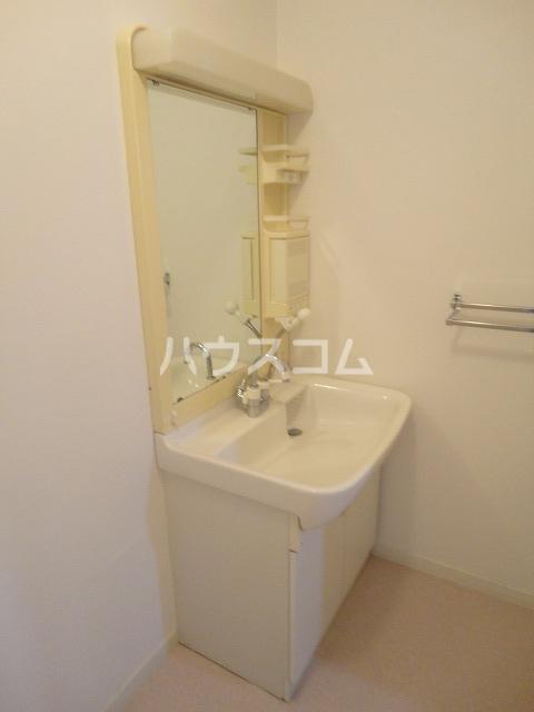 メイプル笹川 202号室の洗面所