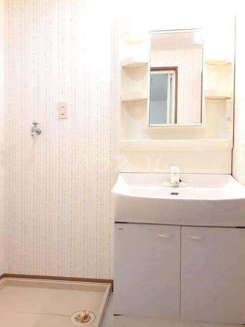 ミーティスパルース 03030号室の収納