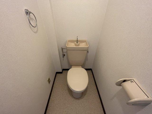 グリーンハイツ横井 03030号室の玄関