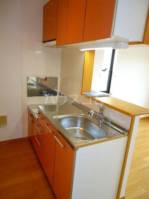 サンラフレシ-ル 02010号室のキッチン