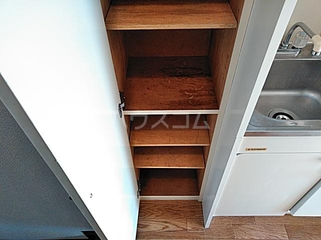 ダイアパレスアクティブシティ本厚木 307号室の収納