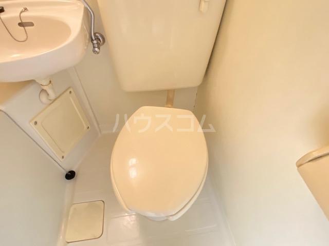 ダイアパレスアクティブシティ本厚木 407号室のトイレ
